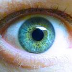 ドイツ製人工網膜、初の研究者主導臨床試験のイメージ